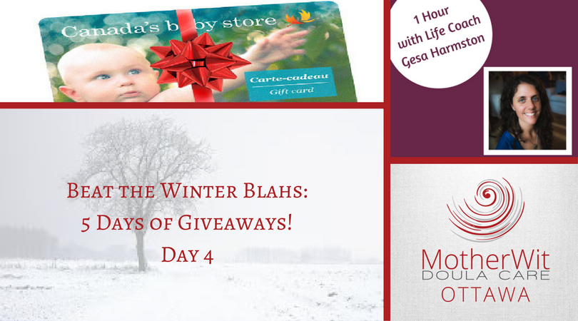 Beat the Winter Blahs: 5 Days of Giveaways! Day 4